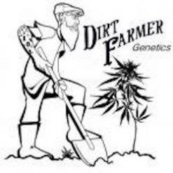 DIRT FARMER GENETICS