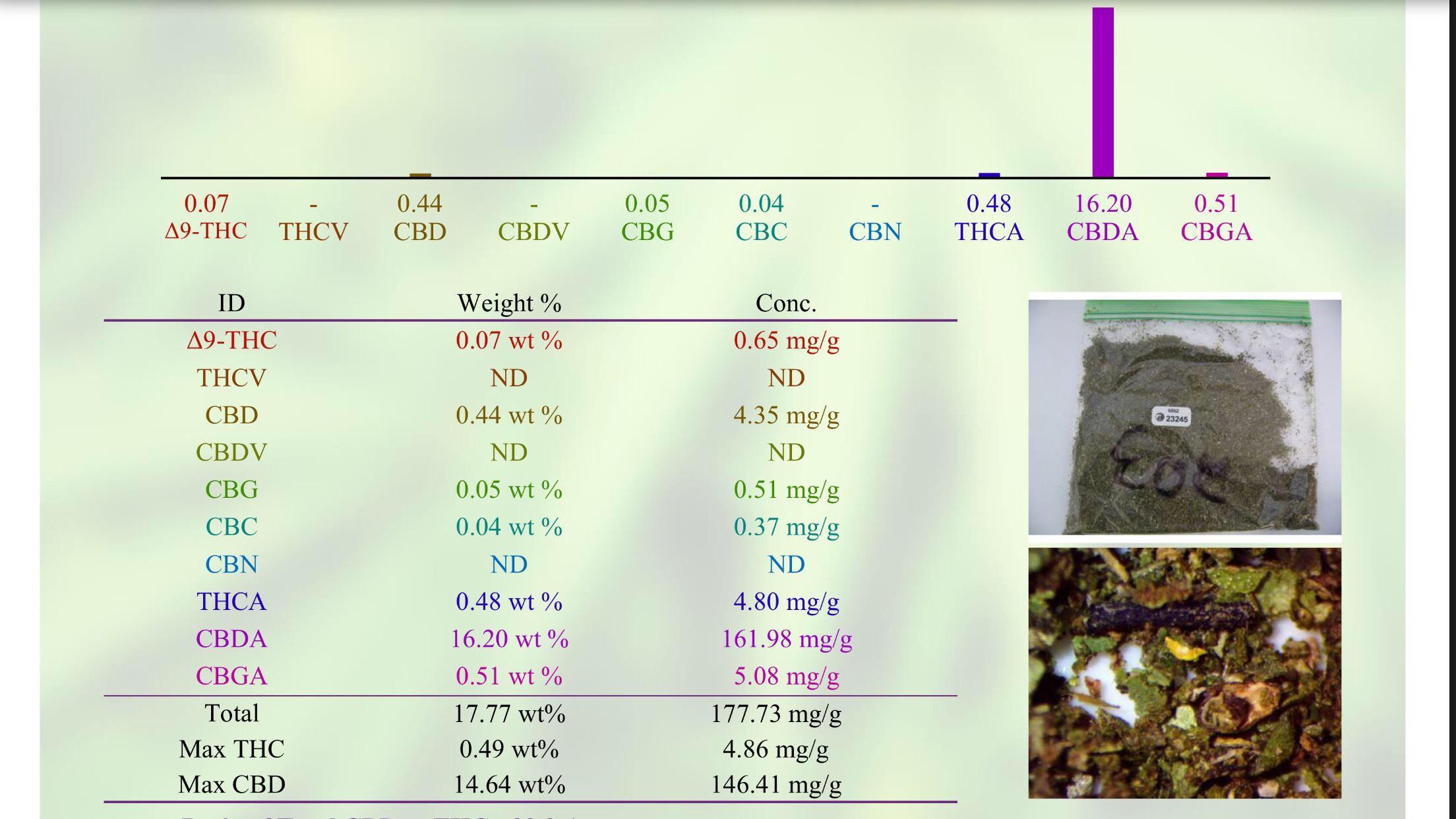 WHOLESALE CBD/HEMP - CHERRY CBD (29 9 : 1) (10+R)